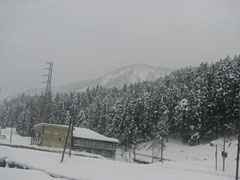 20080120_08