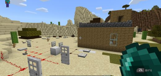 Minecraft / Nintendo Switch