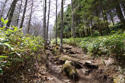 入笠山 トレッキングコース