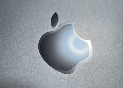 PDA工房 iPad Air PerfectShield 保護フィルム [背面用]